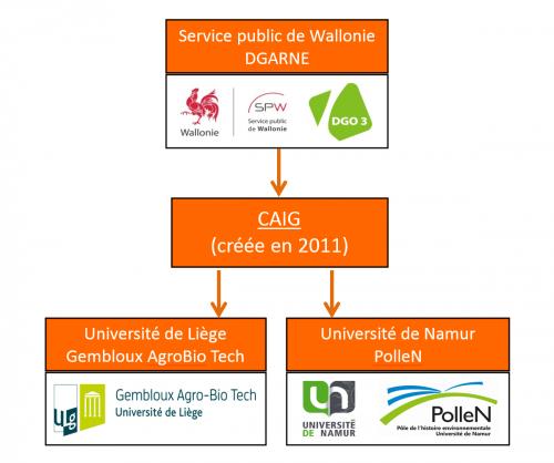 Diagramme CAIG